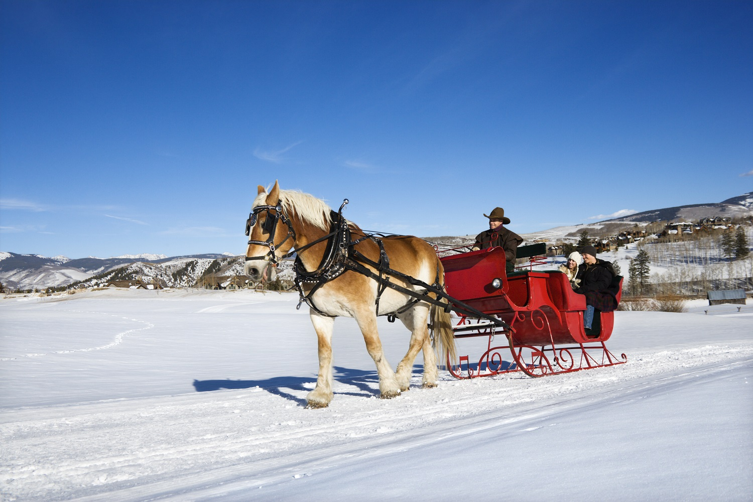 7 of the best sleigh rides in America