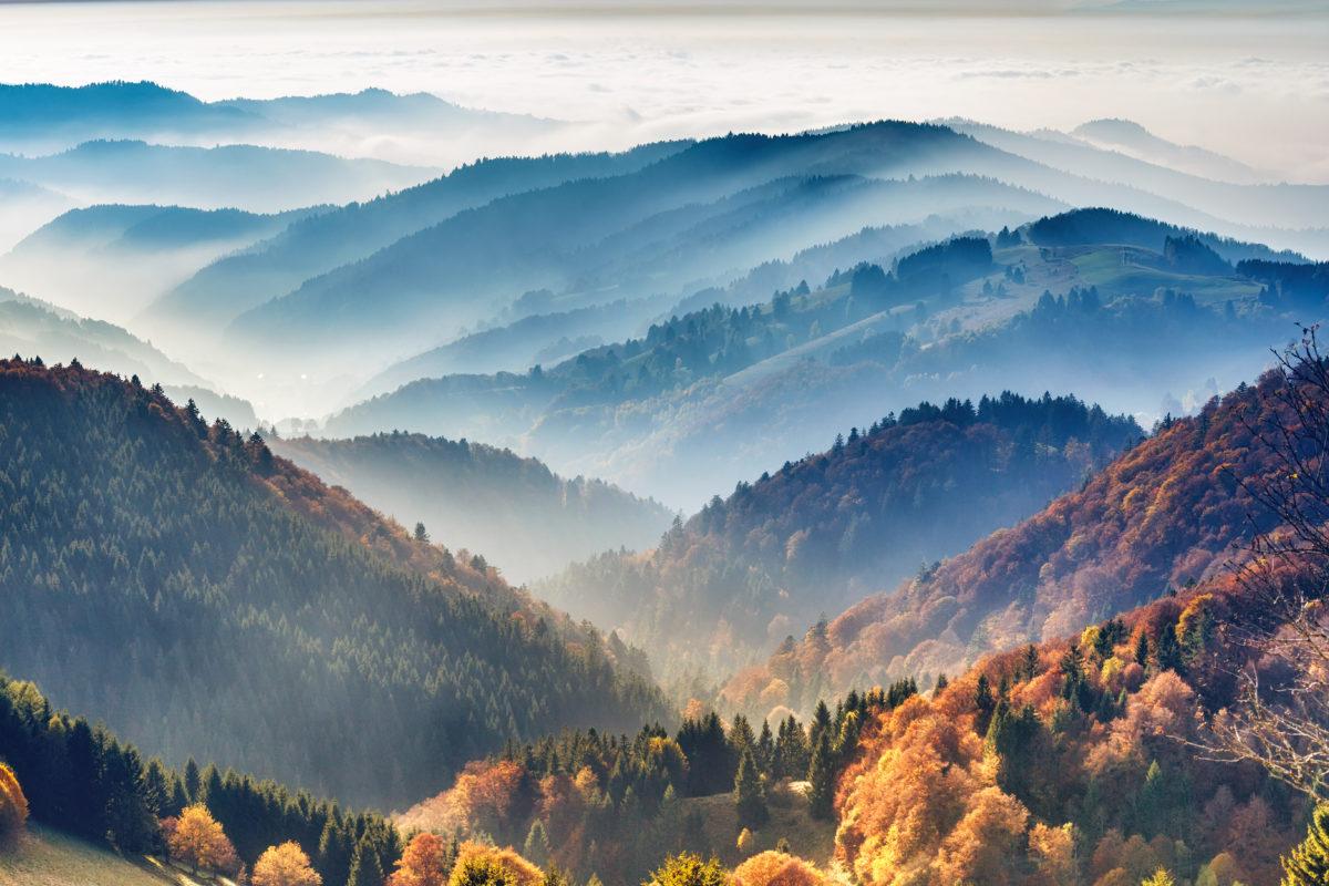 mooiste plekken zwarte woud