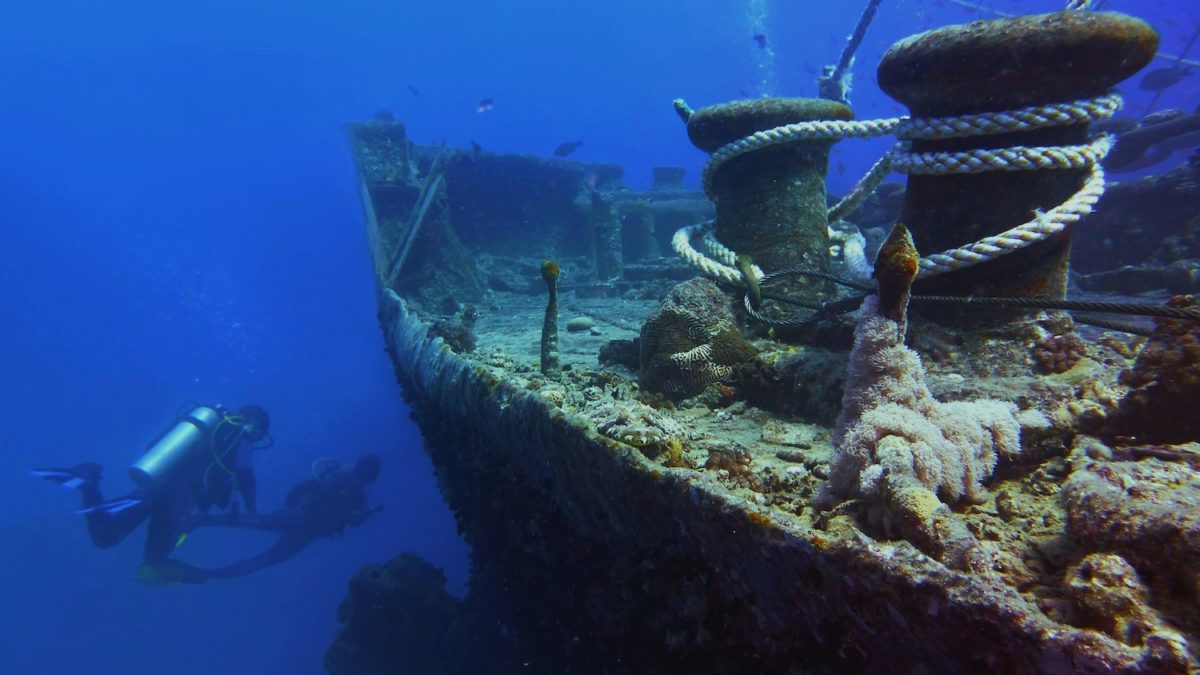 Dive sites around the world Musement